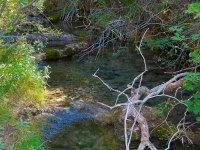 Aguas transparentes del Rio Cuervo