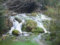 Excursion para ver el Rio Cuervo en Cuenca