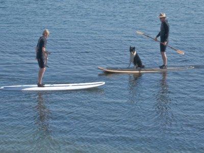 Pindongos Paddle Surf