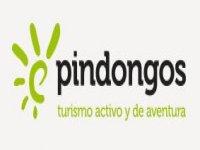 Pindongos Piragüismo