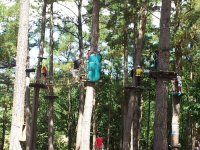 Diversion en el parque de árboles