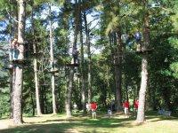 Grupo de personas en parque de árboles