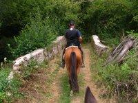 Por el valle de Baztán a caballo