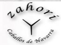 Zahori Caballos de Navarra