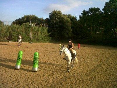 Escola d'equitacio Font d'en Fargues Team Building