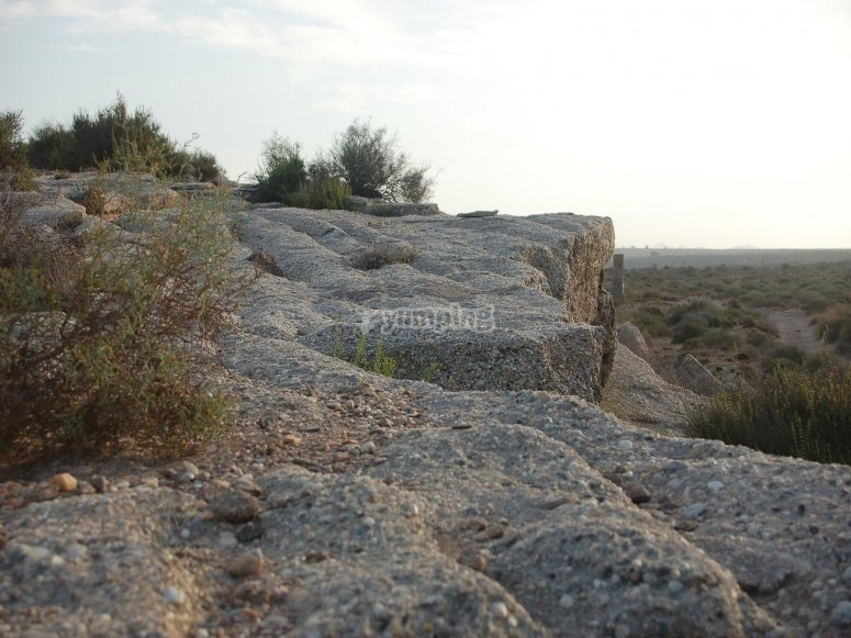 Playa fósil