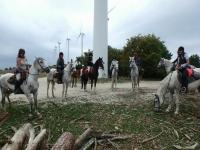 A caballo por los molinos de viento