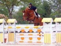 Clases de perfeccionamiento y saltos