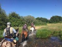 Cruzando el rio con los caballos