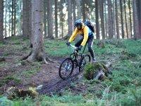 Chico montando en bici en el bosque