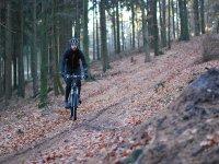 Montando en bici en otoño
