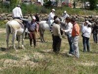 Paseo a caballo y despedidas de soltero