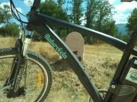 最好的自行车