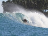 Experto en surf