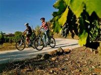 自行车是不可分割的伴侣