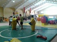 Sumo combat