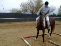 学习调转马头