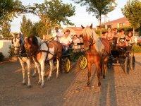 Capeas骑马贵妃