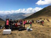 Dia de picnic con caballos