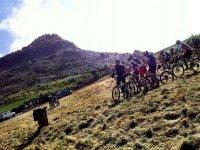 组的山地车骑车人骑自行车的