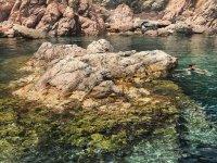 在小海湾里游泳