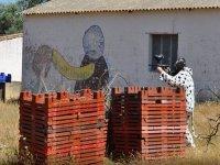 Addio al nubilato originale a Malaga