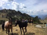 Junto a los equinos en Baqueira