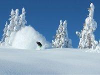 与单板滑雪雪鞋