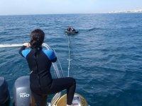 disfruta de las mejores actividades acuaticas