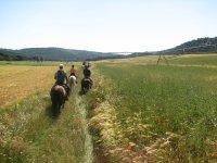 Excursiones por el campo