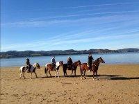 Excursion por la arena de la playa