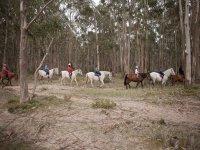 Rutas a caballo en Laredo