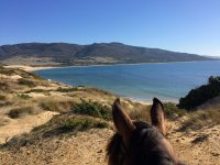 Punta Paloma来自马