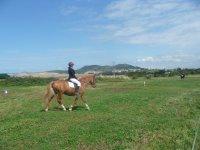 Aprendiendo a adoptar la postura sobre el caballo