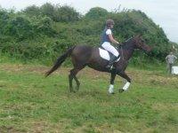 Con el caballo en dia nuboso