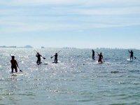 一群人在划桨冲浪