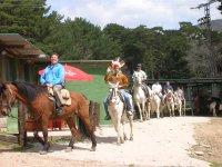 Paseos a caballo guiados