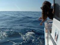 淹没在水中享受在海上兜风,同时凝视海豚