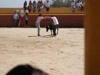 Dos valientes con la vaquilla