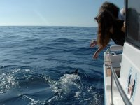 享受在海上兜风边看海豚两位年轻