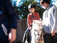 Enjoying an equestrian class