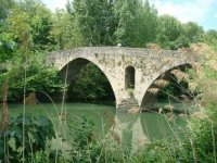 puentes del arga