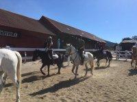 En la finca con los caballos