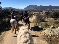 Horseback route in groups