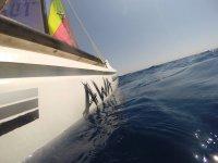 Catamaran on the high seas
