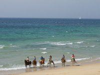 Excursion a caballo en la playa de Tarifa