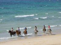 骑马在海岸上加的斯