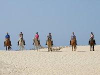 骑马在塔里法沙滩