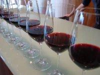 尝试我们的葡萄酒