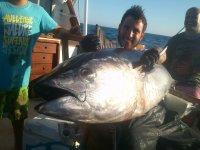 Un gran pescado desde el barco